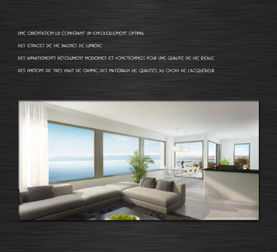 CONCEPT UNIQ AGENCE IMMOBILIERE SMARTIMMO PULLY CATALOGUE PAGE 3